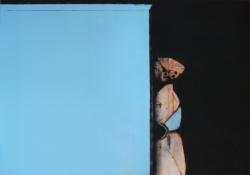 12_eurydice_114x130cm_2013